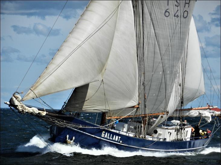 Le Gallant est une goélette à deux mâts, construite aux Pays-Bas